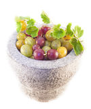 Gooseberry bowl isolated Stock Photos