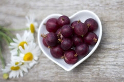 Gooseberry. In a bowl on a table Royalty Free Stock Image