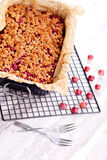 Gooseberry cake Stock Images