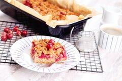 Gooseberry cake Royalty Free Stock Photography