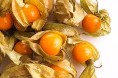 Gooseberry Cape Royalty Free Stock Photos