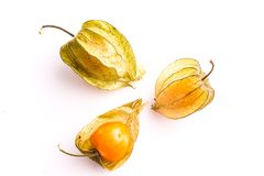 Gooseberry Cape Stock Photography