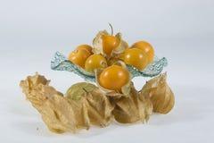 Gooseberry de cabo (physalis) Imagens de Stock Royalty Free