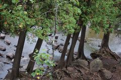GOOSEBERRY FALLS SCENES LAKE SUPERIOR MN. GOOSEBERRY FALLS Royalty Free Stock Photo