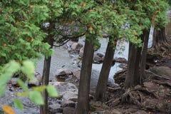 GOOSEBERRY FALLS SCENES LAKE SUPERIOR MN. GOOSEBERRY FALLS Stock Photography