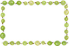 gooseberry frame Royalty Free Stock Photos