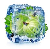 Gooseberry in ice cube. Isolated on white Stock Photography