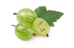 Gooseberry isolado Imagem de Stock