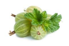 Gooseberry  isolated on white Stock Photo