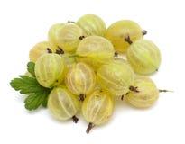 Gooseberry isolated on white Stock Photos