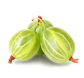 Gooseberry isolated on white Stock Photography