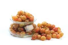 Gooseberry isolated  on white background - Image.  stock photography