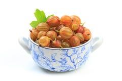 Gooseberry isolated  on white background - Image.  stock image