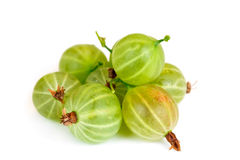 Gooseberry isolated on white Royalty Free Stock Photo