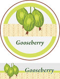 Gooseberry. Labels for design stock image