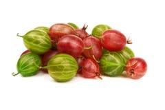 Gooseberry. Pile of gooseberry  on a white background Royalty Free Stock Photos