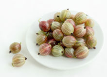 Gooseberry on the plate Royalty Free Stock Image