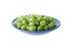 Gooseberry Royalty Free Stock Photo