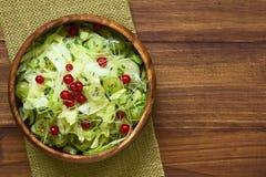 Gooseberry Redcurrant Cucumber Lettuce Salad Royalty Free Stock Photos