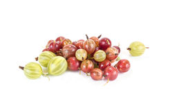Gooseberry. Ripe berry of gooseberry it is isolated on a white background stock photography