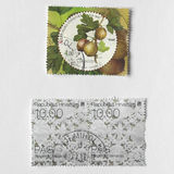 Gooseberry stamp from Croatia Stock Photography