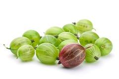 Gooseberry verde imagens de stock royalty free
