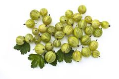 Gooseberry on white background Stock Photos