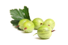 Gooseberry on a white background Royalty Free Stock Photo