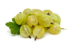 Gooseberry  on white Royalty Free Stock Image