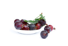 Gooseberry on a white background Stock Image