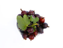 Gooseberry on a white background Royalty Free Stock Photography