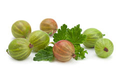 Gooseberry on white Stock Photo