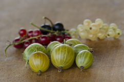 Gooseberry with white, red and black currant Stock Photo