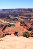 Dead Horse Point. Gooseneck on Dead Horse Point Overlook. Colorado River cutting through becomes Meander Canyon Royalty Free Stock Photography