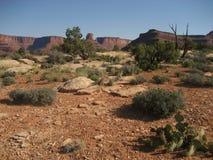 gooseneck trail στοκ εικόνες
