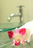 Gootsteen, handdoeken en orchidee Stock Afbeelding