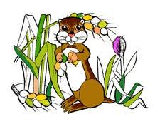 Gopher, śmieszni kreskówek zwierzęta, kolorystyki książka Zdjęcia Royalty Free