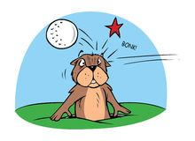 Gopher and golf ball Stock Photography