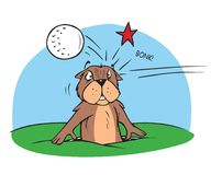 Gopher and golfball. Cartoon illustration of a gopher and golfball Stock Photos