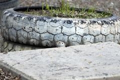 The gopher made a dwelling under a concrete slab Royalty Free Stock Photography