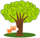 Gopher's tree Stock Photos