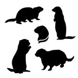 Gopher set vector. Gopher set of silhouettes vector vector illustration