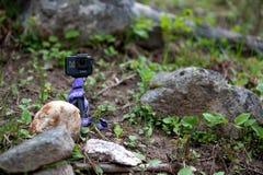 GoPro que senta-se em uma rocha na floresta fotos de stock royalty free