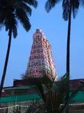 Gopuram einschließlich den Baum Stockfotos