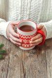 Gorąca czekolada w rękach Obraz Stock