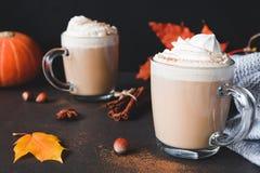 Gorąca czekolada z Batożącym cynamonem i śmietanką Obrazy Royalty Free