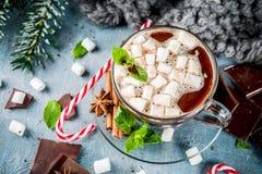 Gorąca czekolada z mennicą i marshmallow Obraz Royalty Free