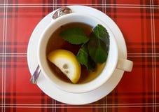 Gorąca filiżanka herbaciana whith cytryna, mennica i obraz royalty free