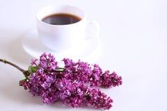 Gorąca filiżanka kawy i gałąź kwitnący bez na białym drewnianym tle Sezonowy, ranek kawa, Niedziela relaksuje zdjęcia royalty free