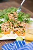 Gorąca i Korzenna Piec na grillu wieprzowiny sałatka Tajlandzki wołowiny sałatki przepis Tradit Zdjęcia Stock